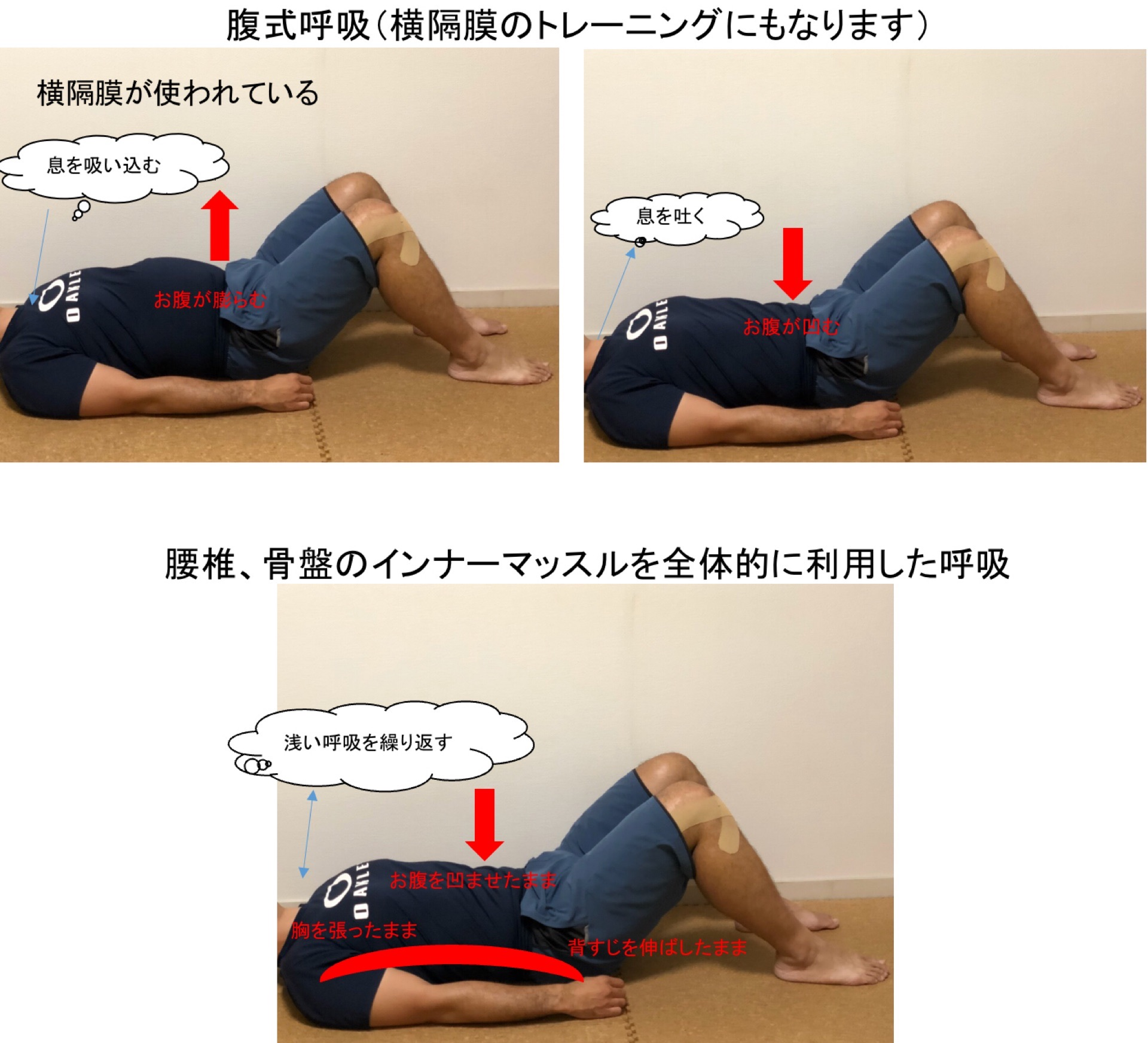 腹式呼吸とインナーマッスル