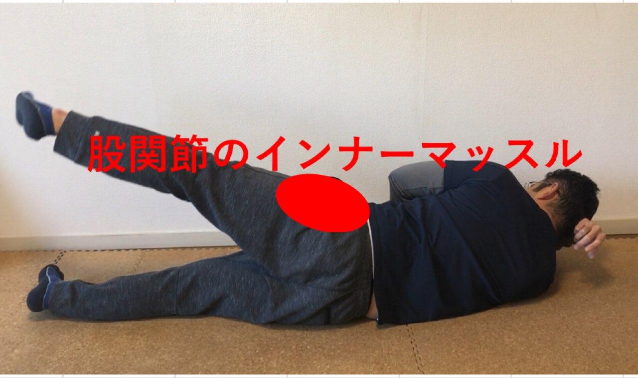 股関節のインナーマッスル