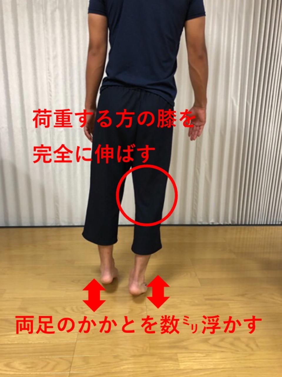 歩行と下腿三頭筋