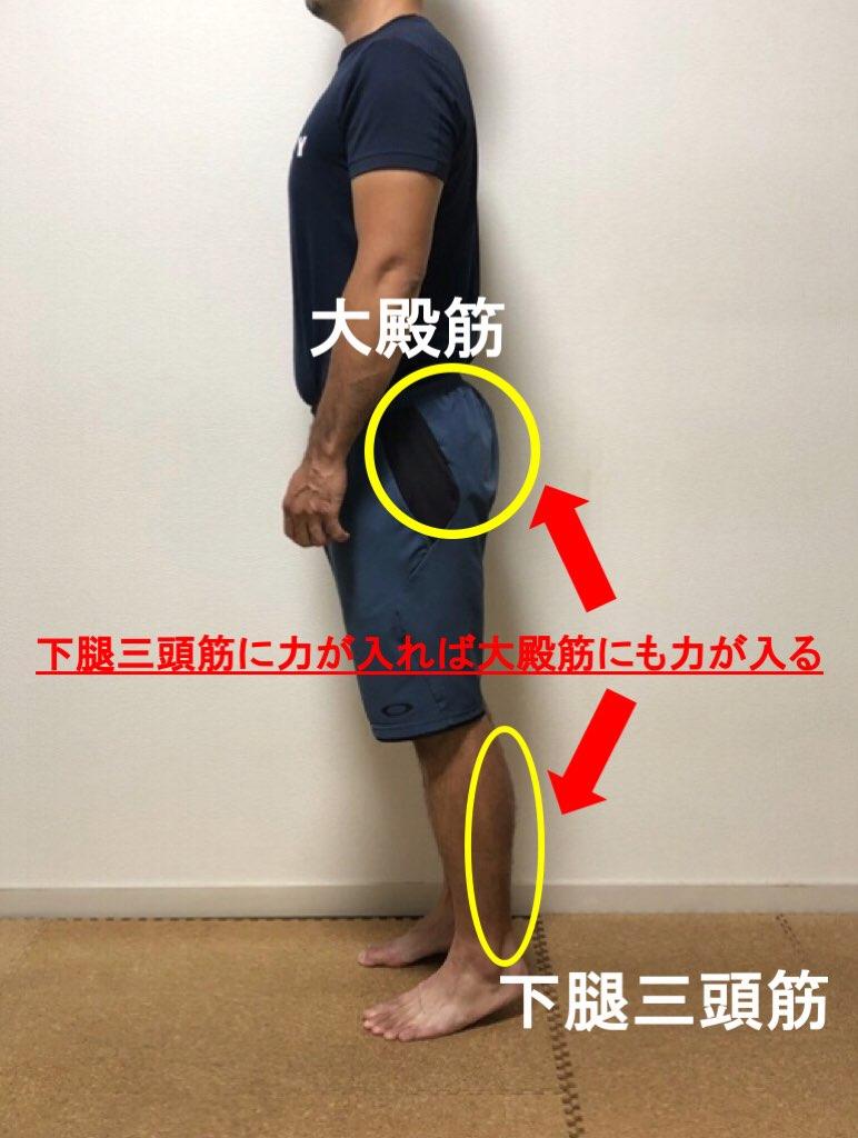 大殿筋と下腿三頭筋