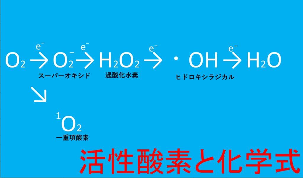 活性酸素の生成