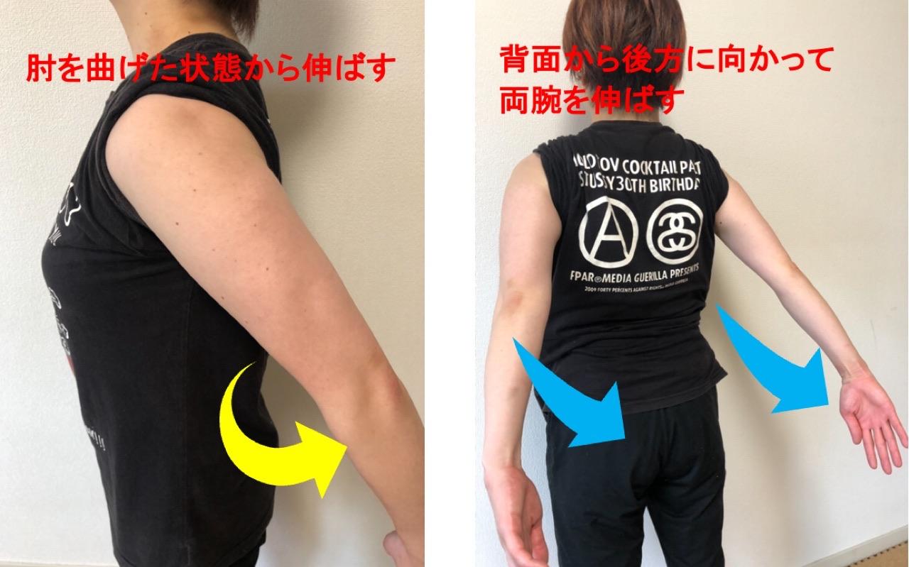 上腕三頭筋の作用