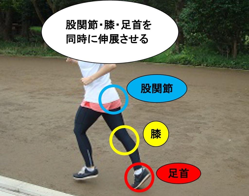 股関節・膝・足首の同時伸展