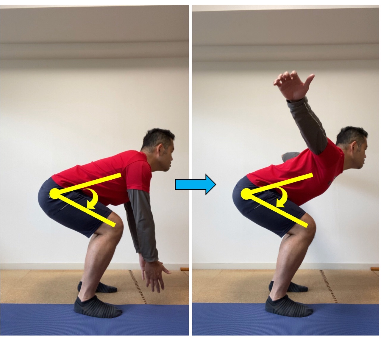 肩甲骨体操と股関節の関係
