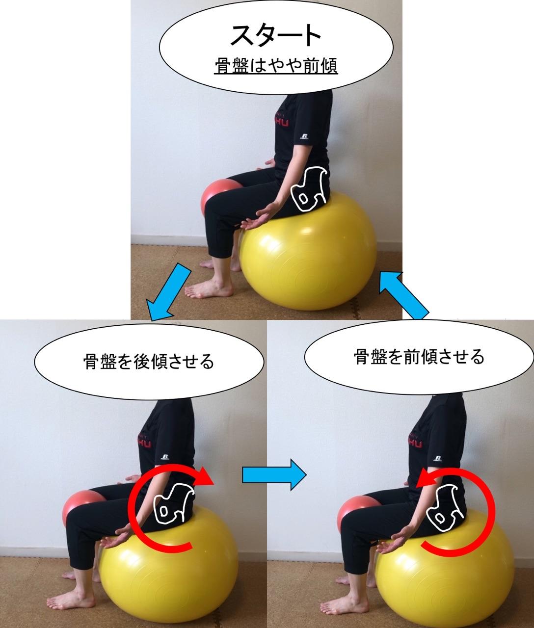 骨盤の前傾と後傾エクササイズ