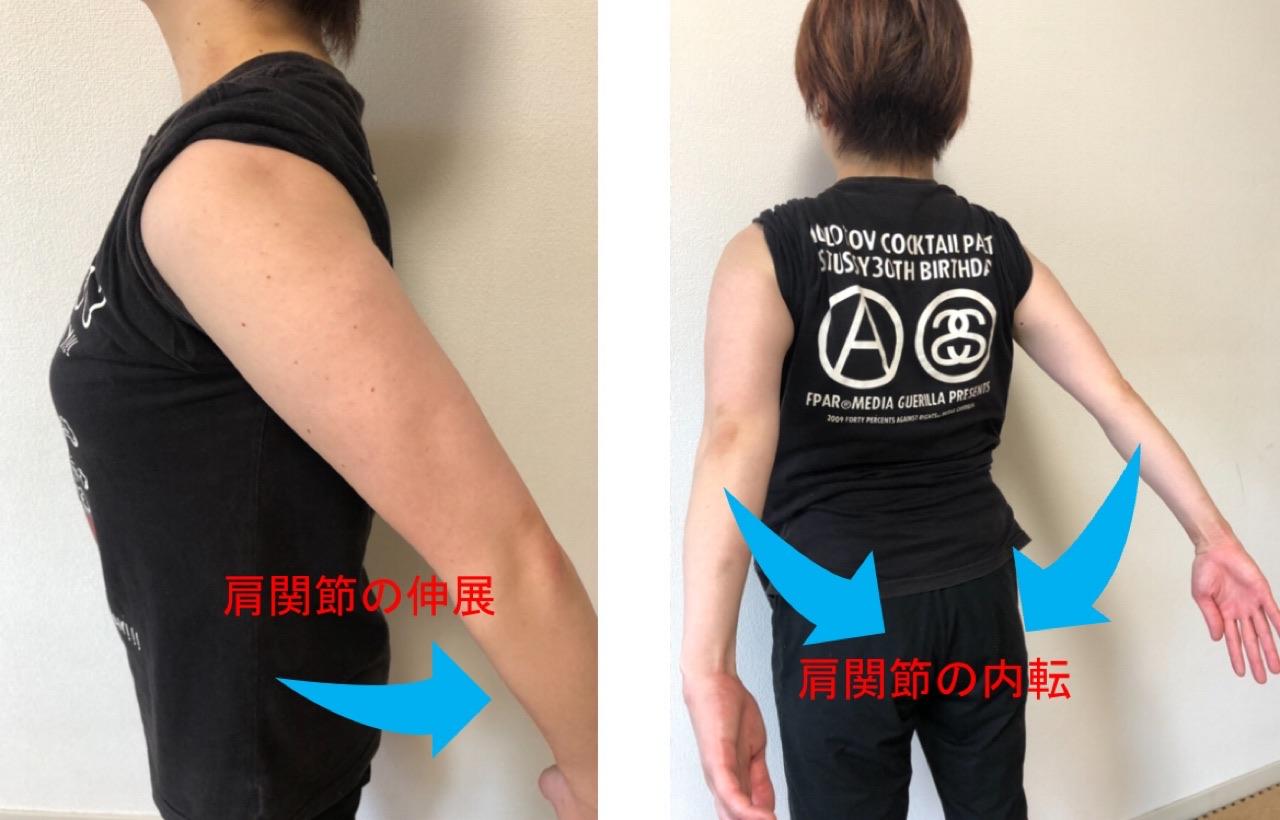 肩関節の内転と伸展